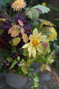 Autumn leaves, dahlias and berries