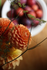 Dahlias, fennel and damsons