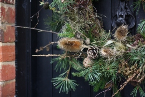 Foragers christmas wreath with teasels