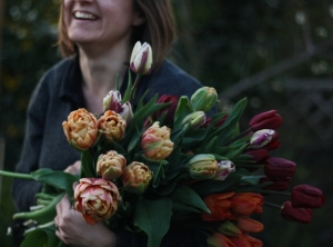 Harvesting tulips, Belle epoque, Brown sugar and Jan Reus