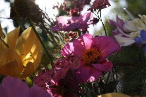 Late summer dahlias, achillea and cosmos arrangement